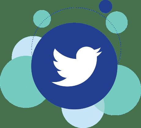 social media Twitter logo